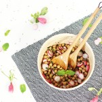 <!--:en-->Chickpeas & Radishes Salad with Cumin and Mint<!--:--><!--:fr-->Salade de Pois-Chiches & Radis au Cumin et à la Menthe<!--:-->
