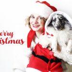 <!--:en-->MERRY CHRISTMAS !<!--:--><!--:fr-->JOYEUX NOEL !<!--:-->